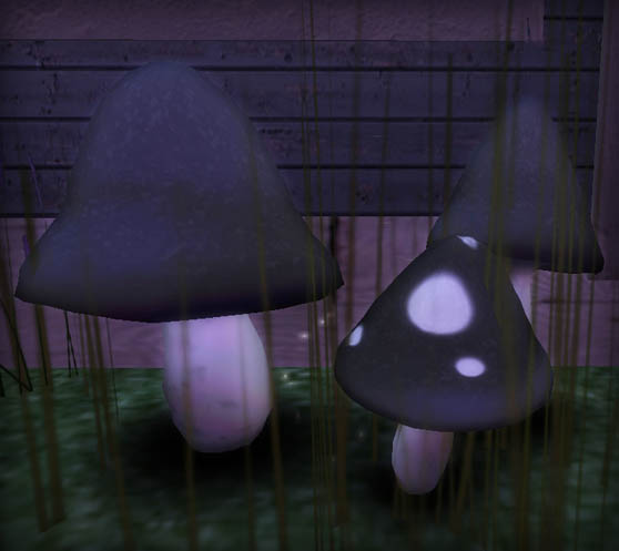 kunst mushrooms
